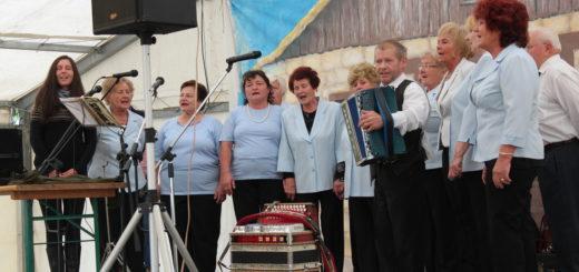 pevski zbor du vojnik